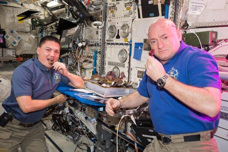astronautas comendo alface