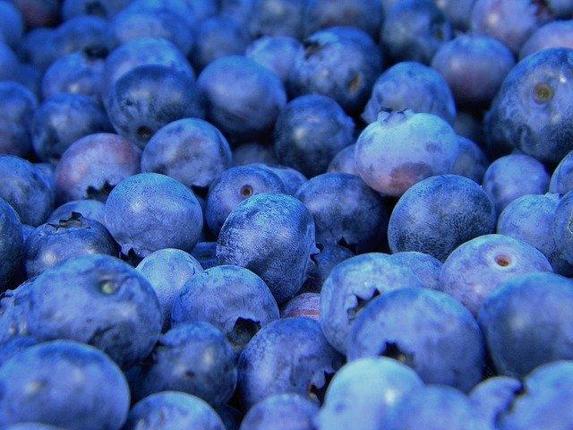 blueberries 1245724 640